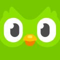 Duolingo icon